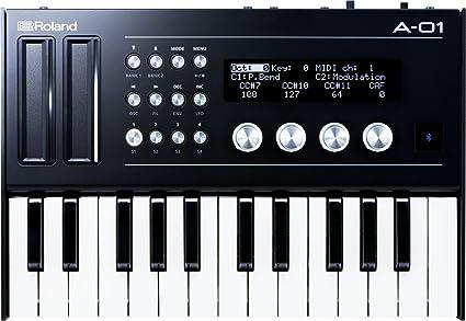 Roland a-01K Boutique Midi Controlador/Synth Plus k25m teclado unidad