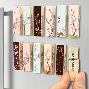 12pcs Refrigerator Magnet Clips by Cosylove-Decorative Magnetic Clips Made of Wood with Beautiful Patterns–Super Fridge Magnets for House Office Use - Display Photos,Memos, Lists, Calendars (Flower02)