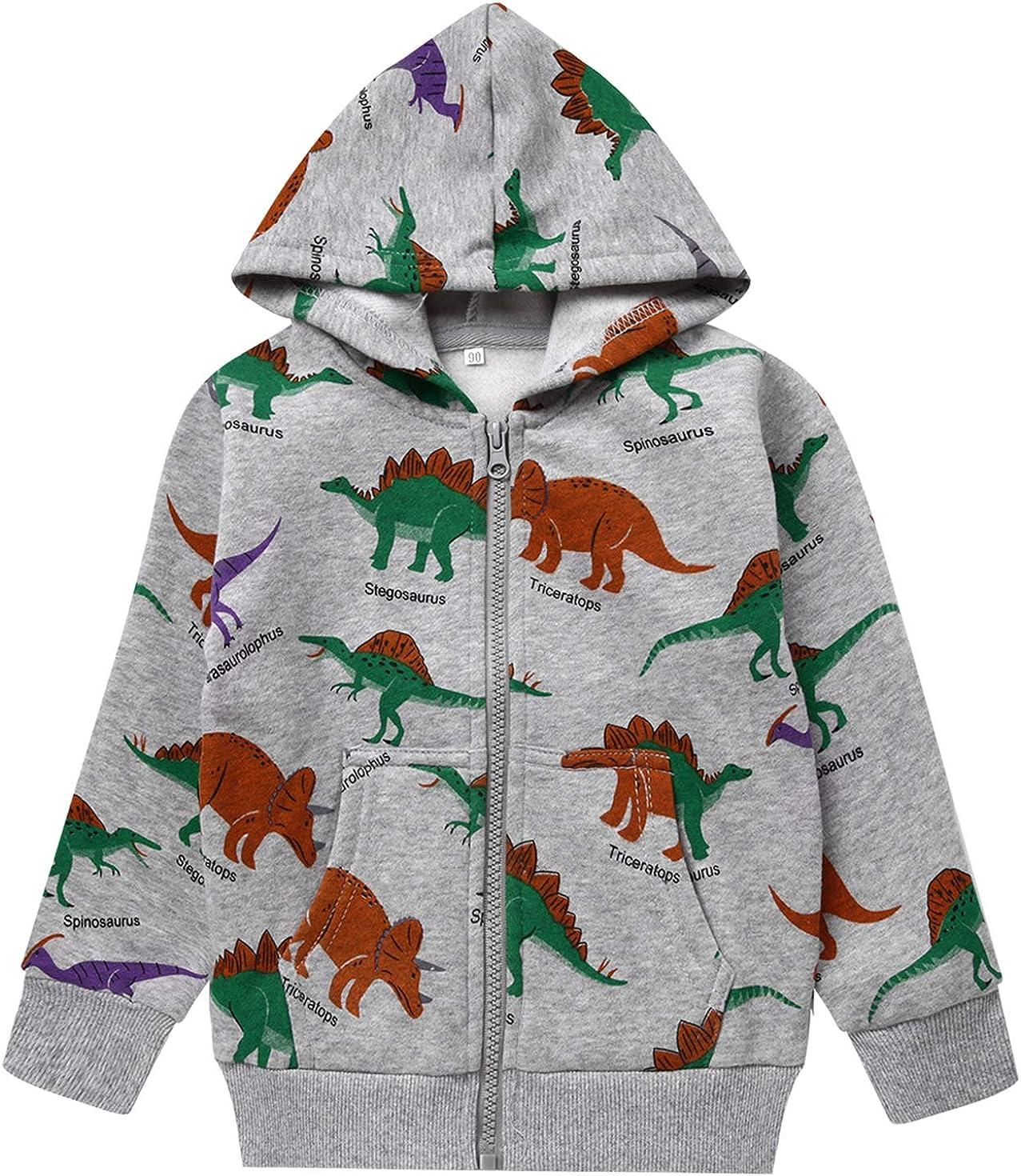 Toddler Boys Dinosaur Sweatshirts Cartoon Winter Long Sleeve Kids Sport Outdoor Pullover Tops Tees 2T-8T: Clothing
