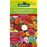 "Dehner Blumen-Saatgut, Portulakröschen, ""Gefüllte Prachtmischung"", 5er pack (5 x 0.7 g)"