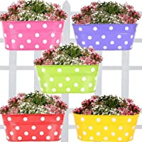 TrustBasket Dotted Oval Railing Planter