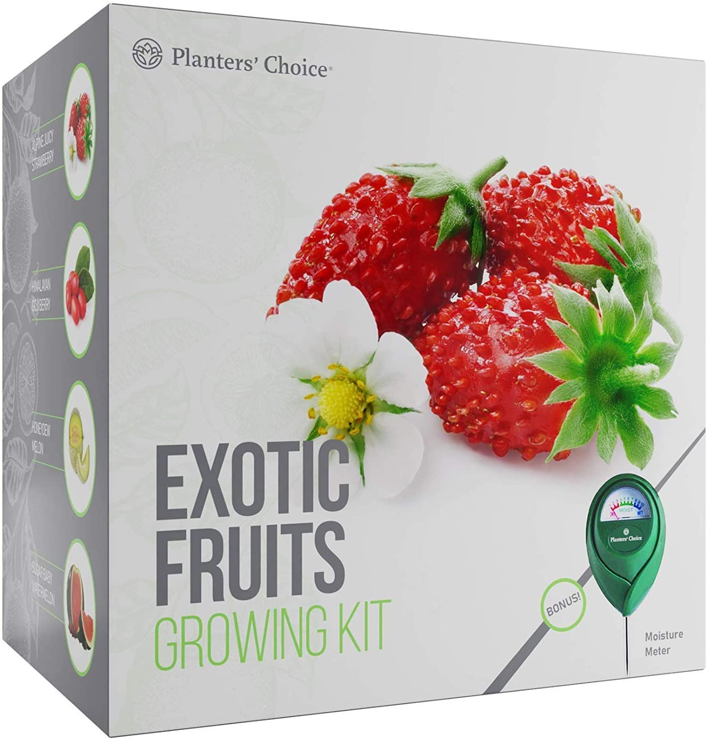 Amazon Com Planters Choice Exotic Fruits Growing Kit