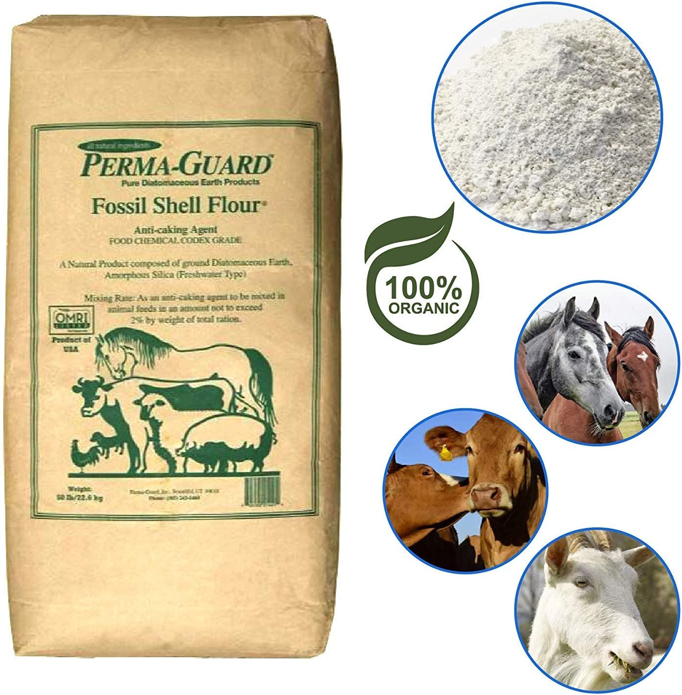 1//2 pound 100/% pure Diatomaceous Earth home garden Feed Grade fossil shell flour