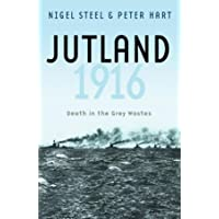 Jutland, 1916: Death in the Grey Wastes