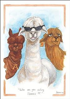 Humorous Alpaca themed greeting card Alisons Animals NEW Who you calling Llamas?