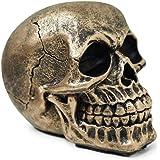 Crânio Caveira Realista Osso Resina Pequeno (Dourado)