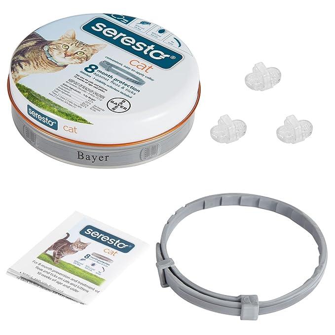 BEST COLLAR Best Collection - Collar para gatos con diseño de seresto y pulgas para todo tipo de pesos, 8 meses de protección: Amazon.es: Productos para ...