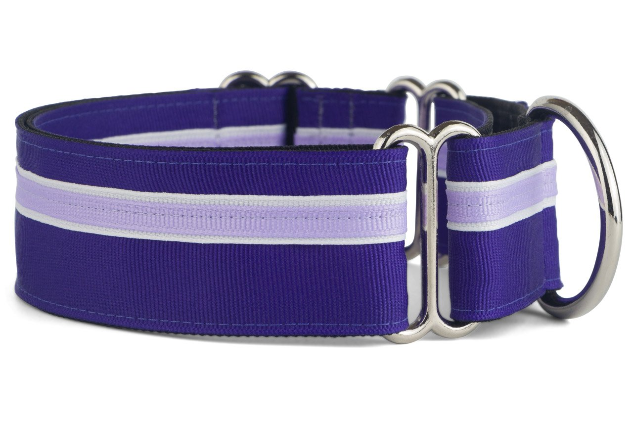 If It Barks - 1.5'' Martingale Collar for Dogs - Adjustable - Nylon - Strong and Comfy - Ideal for Training - Made in USA - Medium, Grape Crush