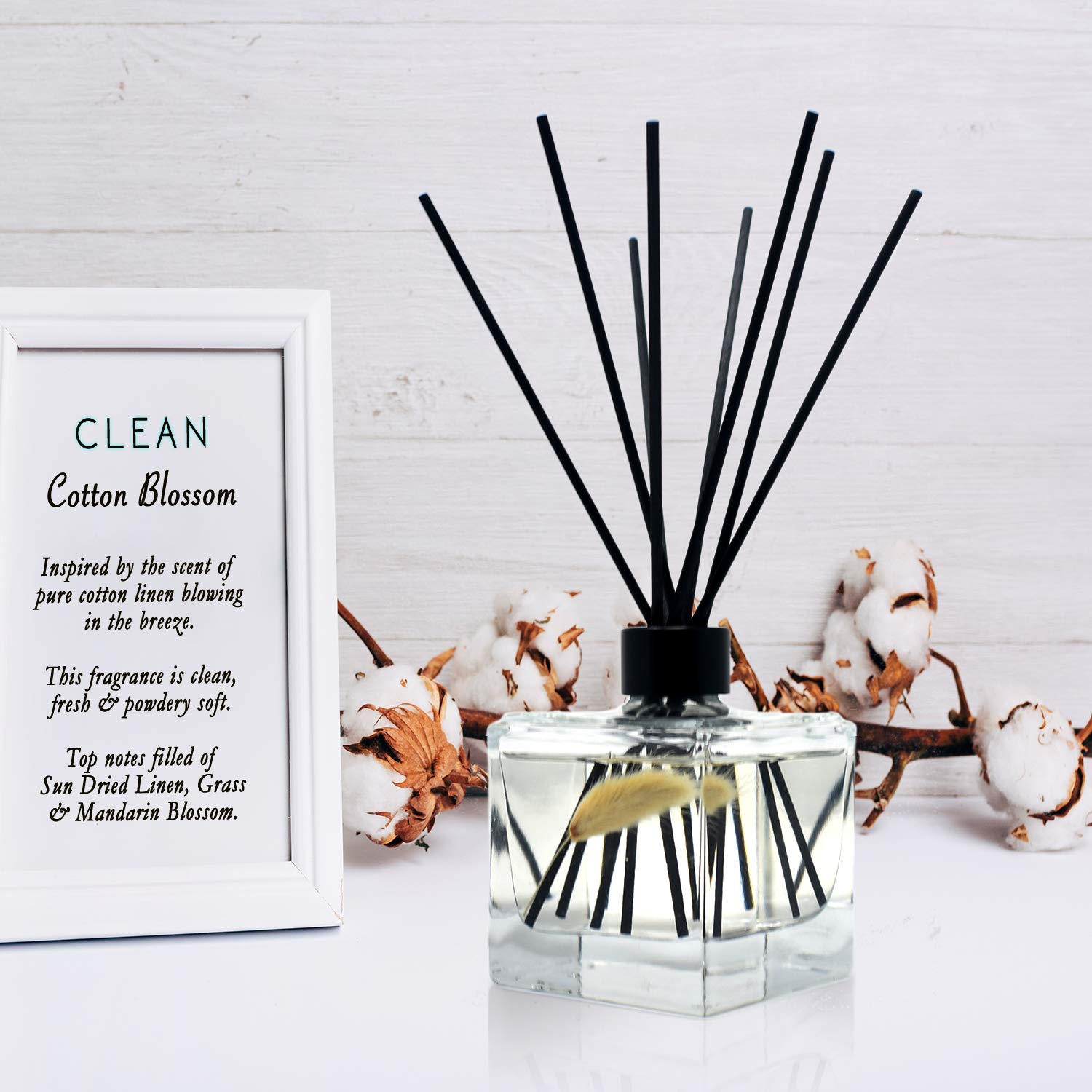 LOVSPA Clean Cotton Blossom Reed Diffuser Oil and Sticks Gift Set | Airy Green Floral with Powdery Woods, Sun Dried Linen & Mandarin Blossom | Best Housewarming Gift Idea | Made in The USA by LOVSPA (Image #4)