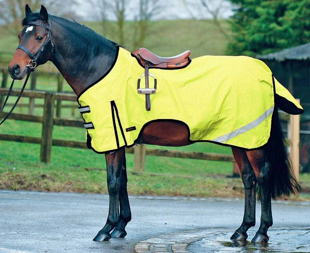 White Horse Equestrian Boston Pony Riding Waterproof Reflective Exercise Sheet