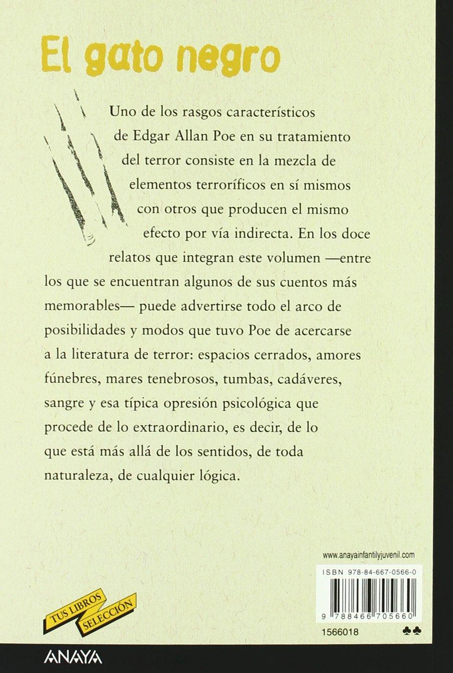El gato negro / The Black Cat (Tus Libros Seleccion/ Your ...