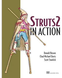 the struts framework practical guide for programmers investment