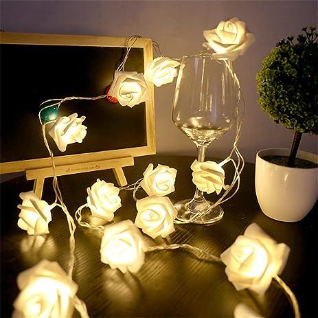 Amazon.com: Christmas Decoration Light,Faber3 LED Rose Lights Window ...