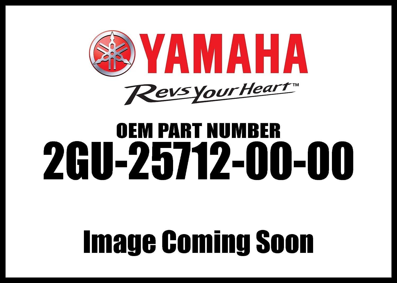 Yamaha 2GU-25712-00-00 Bracket Disc; 2GU257120000 Made by Yamaha