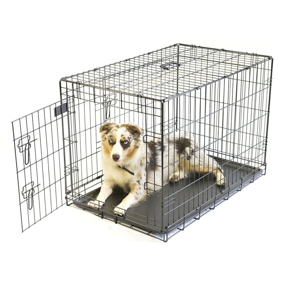 Pet Champion Deluxe 36 Inch Folding Portable 2-Door Wire Pet Crate Kennel, Large, Up to 70 Pounds by Pet Champion (Image #1)