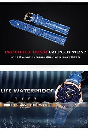 Amazon.com: Yelovemei Women Quartz Watch Waterproof Starlight Dial Leather Band Wristwatch for Lady (Blue): Watches