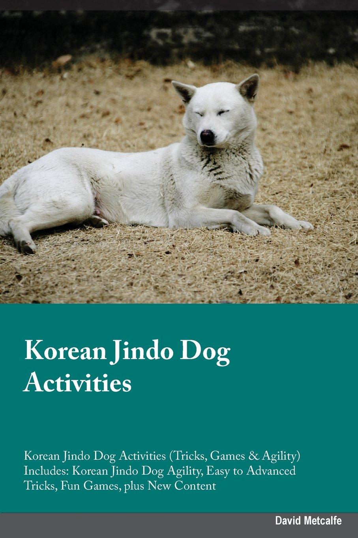 KOREAN JINDO DOG ACTIVITIES KO