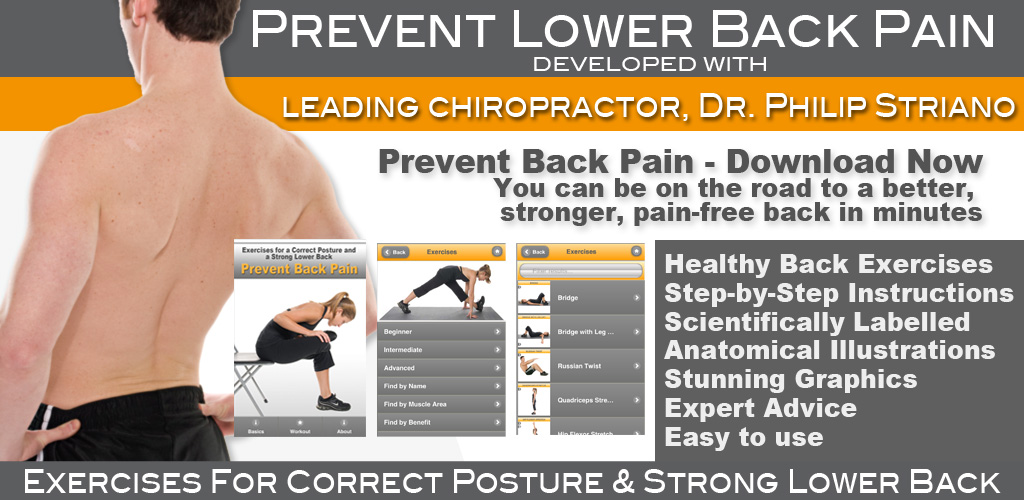 Amazon.com: Prevent Back Pain: Exercises for a Correct ...