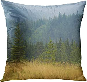 Wesbin Throw Pillow Cover Trees in a Field British Columbia Canada Home Artwork Living Room Bedroom Office Decor Prints Easy to Hang