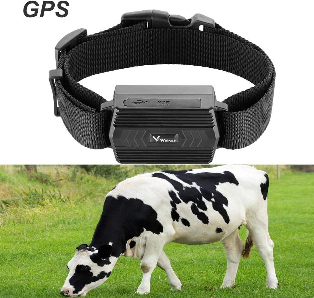 Rastreador GPS para exteriores, impermeable IP66 con rastreador GPS en tiempo real, antipérdida y antirrobo