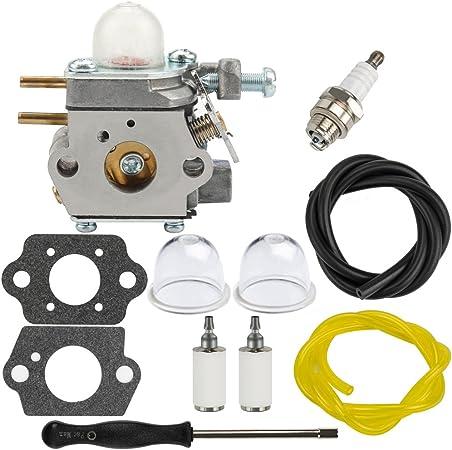 Amazon.com: Dalom RM2510 carburador W/Filtro de combustible ...