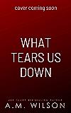 What Tears Us Down: A Single Dad Standalone Romance (Arrow Creek Book 3)