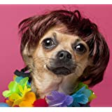 Dog Wig Pet Costumes, FMJI Small Dog Costume Synthetic Accessories Cat Headwear for Halloween Christmas Eve Festival Party