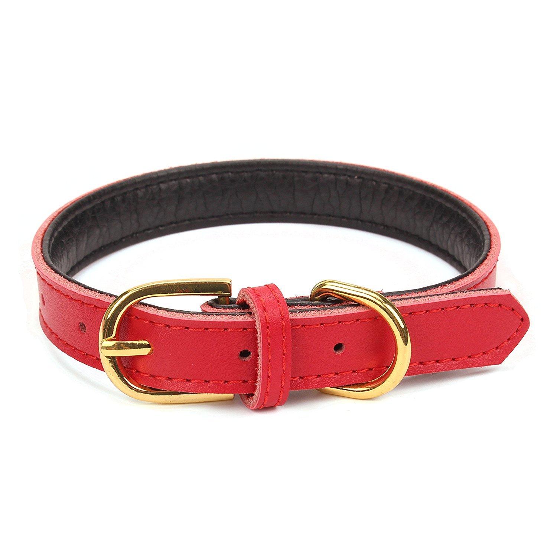 Mcdobexy collier rembourré et doux en cuir pour chien et chat de petite et moyenne taille CL