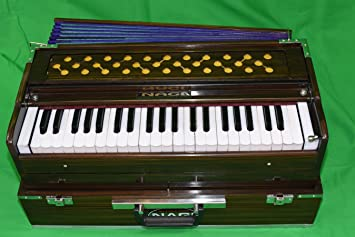 Nagi marca profesional Harmonium (portátil) con bolsa de transporte: Amazon.es: Instrumentos musicales