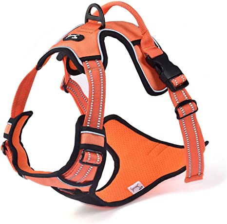 Louvra Arnés del Perro Antitirones Básicos Adjustable de Nylon ...