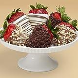 Shari's Berries - Half Dozen Gourmet Dipped Fancy Strawberries - 6 Count - Gourmet Baked Good Gifts