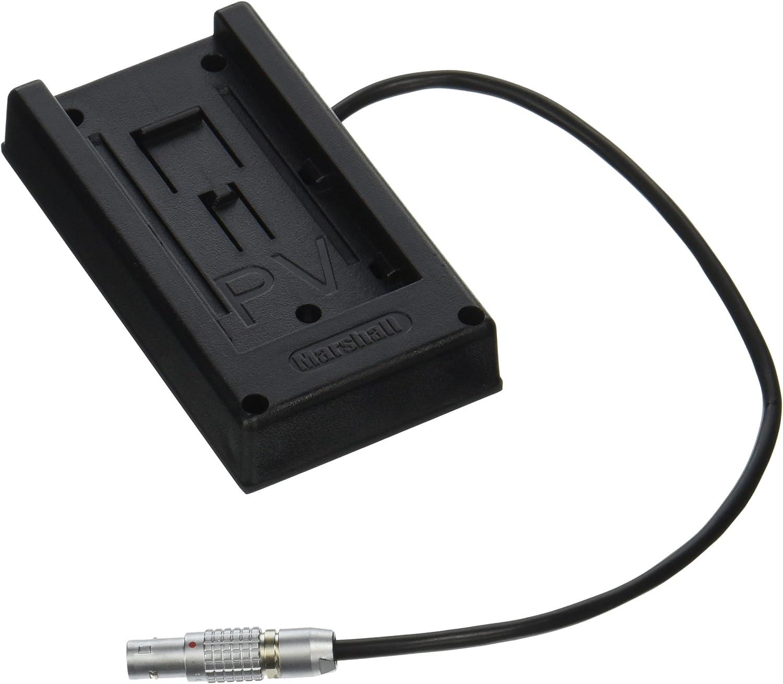 Teradek Inc Bit-710 2-Pin Lemo to Barrel Adapter Black 10-Inch Cable