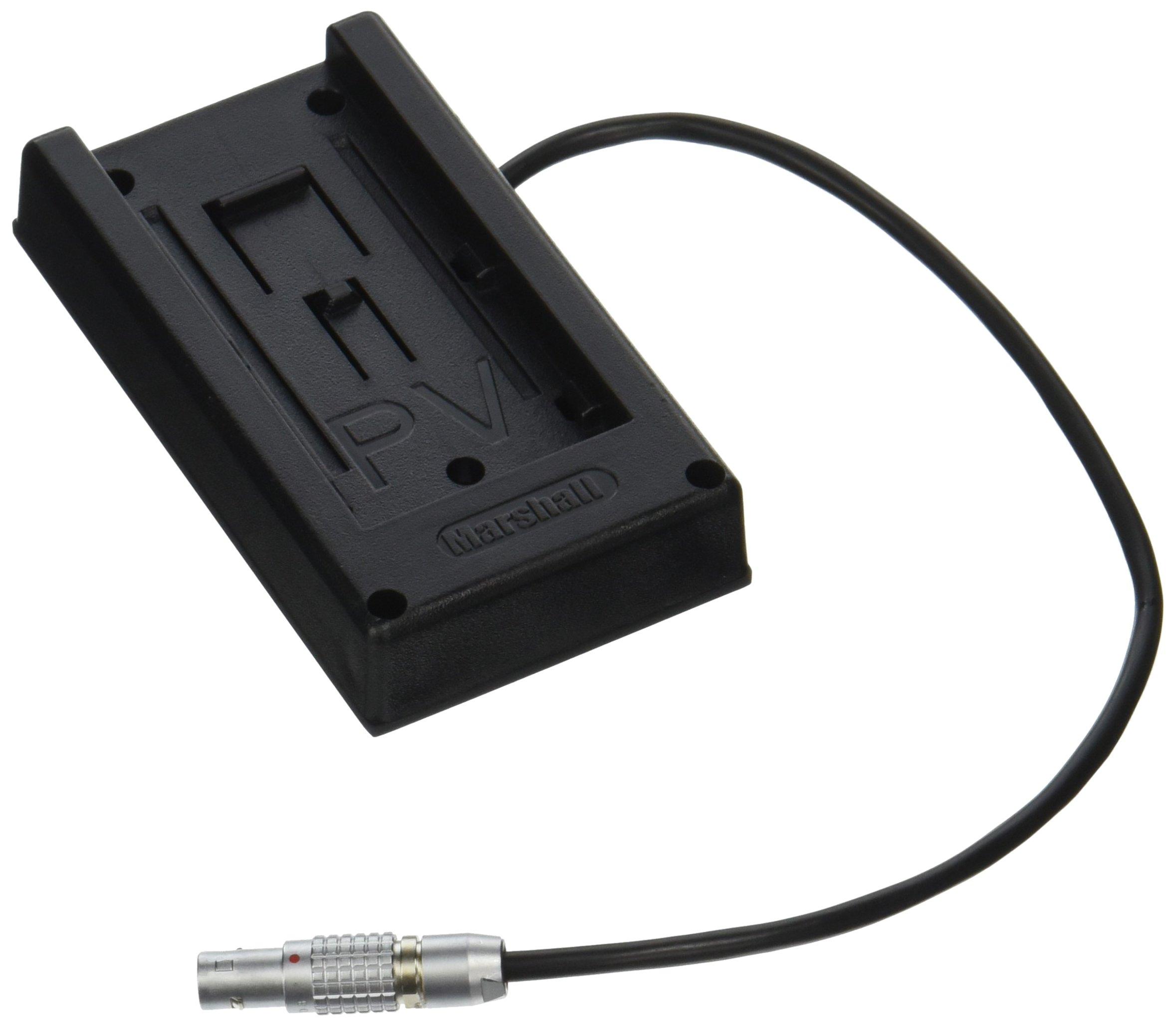 Teradek Inc Bit-710 2-Pin Lemo to Barrel Adapter- 10-Inch Cable (Black)
