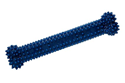 Pet Supplies   Pet Chew Toys   Nylabone Dental Chew Giant Original ... 27133e04f99
