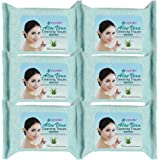 Epielle Makeup Remover Cleaning Towelettes 30ct