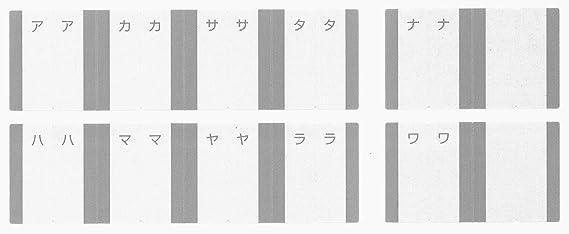 Kokuyo tarjetero kawakami-shiki A4 500 gris de 2 agujeros ...