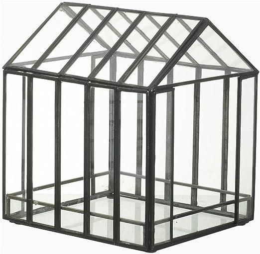 Mini invernadero de cristal terrario macetero en metal negro por Parlane: Amazon.es: Hogar