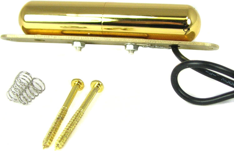 Gold Lipstick Style Pickup