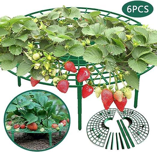N / A - Juego de 6 soportes de fresa para jardín y plantas, protector de soporte para
