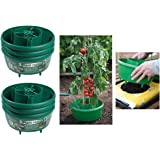6 x All In 1 Garden Plant Halos Crop Support Watering Tubs For Grow Bags
