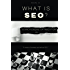 What Is SEO? Search Engine Optimization 101
