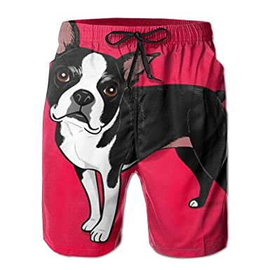 Ravis Boston Terrier Dog Leisure Quick Drying Men Board Shorts