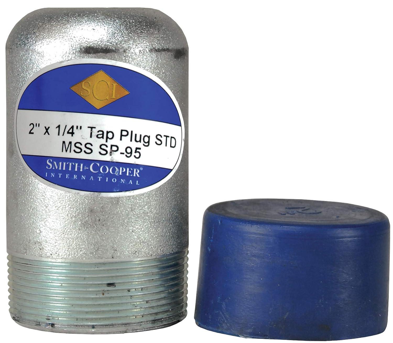 Zinc Plated Schedule 40 2 ID Dixon BP40-200T025 2 x 1//4 TAP Bull Plug 2 ID
