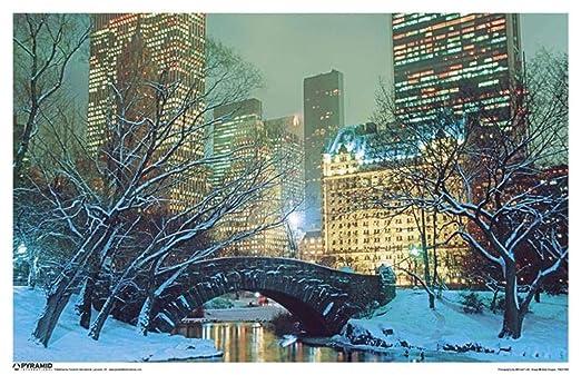 by burning desire Poster Cartel de Nieve de Central Park ...