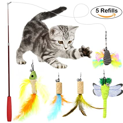 Dragonfly cat toys wow blog for Retractable cat toy
