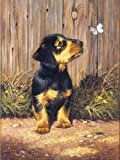 Royal & Langnickel Painting by Numbers A4 Size Dachshund Puppy Designed Painting Set