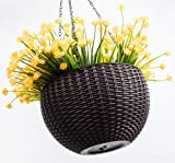 Foraineam 10.2 Inches Round Basket Hanging