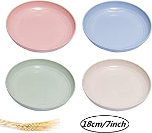 choary Lightweight Unbreakable Wheat Straw Plate, Healthy Eco-Friendly Degradable fruit Dishes, BPA free plates,Dishwasher Microwave Safe Plates,Reusable Plate for Fruit Snack Container. (MULTI)
