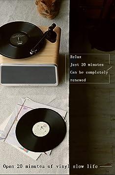 Tocadiscos Bluetooth inalámbrico Estéreo Soporte de ...