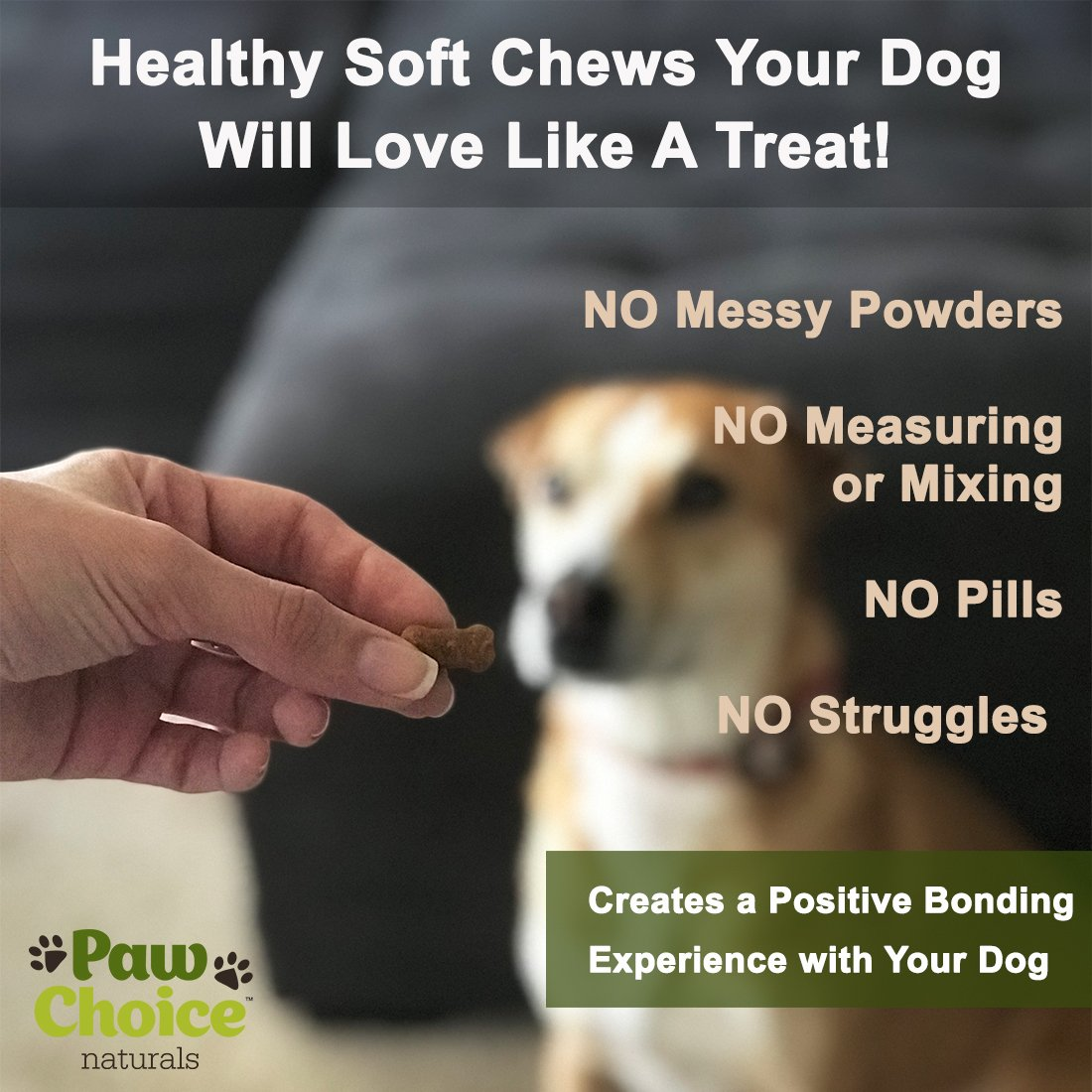 Probiotics for Dogs with Prebiotics - Daily Chews for Digestion, Regularity, Diarrhea Relief, Plus Supports Immune System and Health - Natural Supplement and Treat Made in USA by Paw Choice (Image #3)